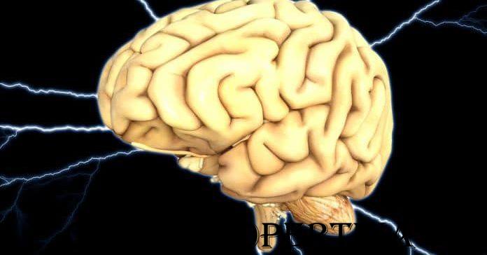 Cervello-Parkinson-696x526-696x364